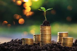 thumbnails Portfolio Management for Family Offices: The Endowment Approach