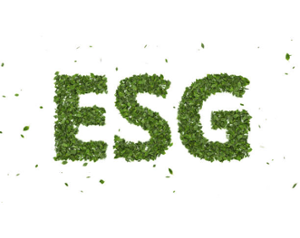 thumbnails Stormy Weather: Adapting to the ESG Global Climate Change Regulations